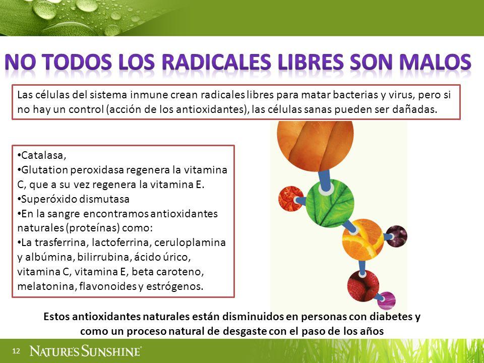 12 Las células del sistema inmune crean radicales libres para matar bacterias y virus, pero si no hay un control (acción de los antioxidantes), las cé