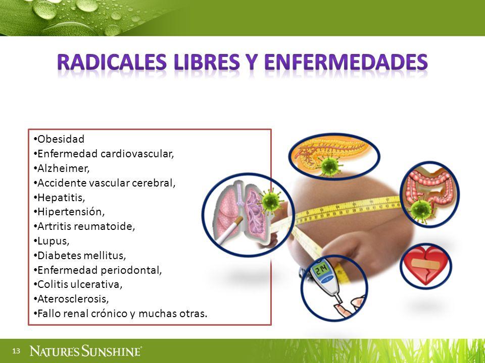 13 Obesidad Enfermedad cardiovascular, Alzheimer, Accidente vascular cerebral, Hepatitis, Hipertensión, Artritis reumatoide, Lupus, Diabetes mellitus,