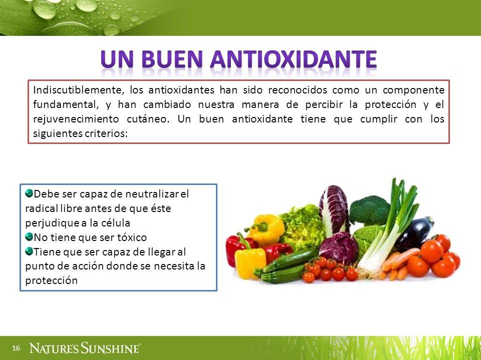16 Indiscutiblemente, los antioxidantes han sido reconocidos como un componente fundamental, y han cambiado nuestra manera de percibir la protección y