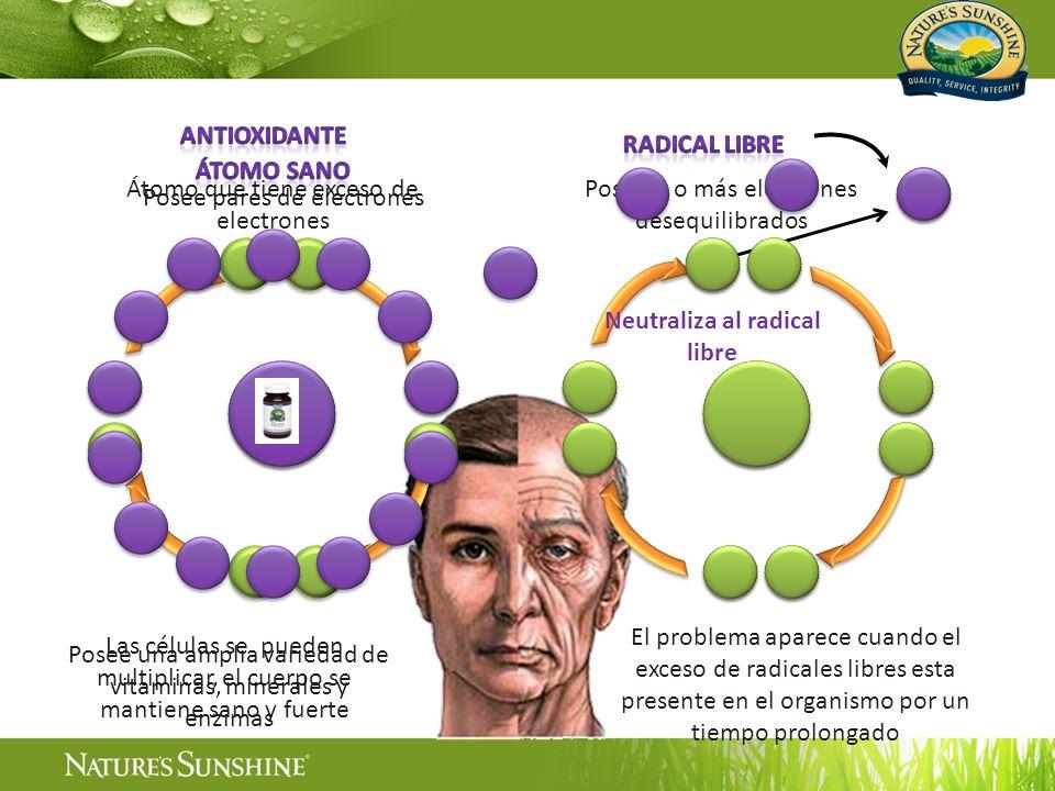 Las células se pueden multiplicar, el cuerpo se mantiene sano y fuerte Posee pares de electrones Posee 1 o más electrones desequilibrados El problema