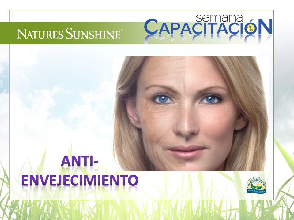 16 Indiscutiblemente, los antioxidantes han sido reconocidos como un componente fundamental, y han cambiado nuestra manera de percibir la protección y el rejuvenecimiento cutáneo.