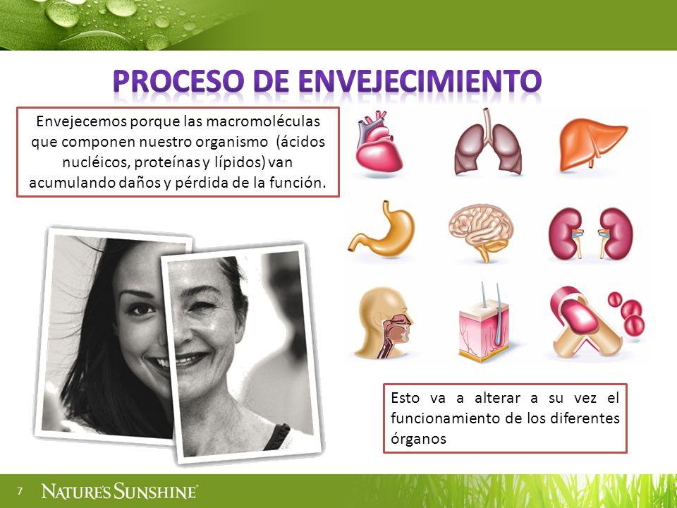 7 Envejecemos porque las macromoléculas que componen nuestro organismo (ácidos nucléicos, proteínas y lípidos) van acumulando daños y pérdida de la fu
