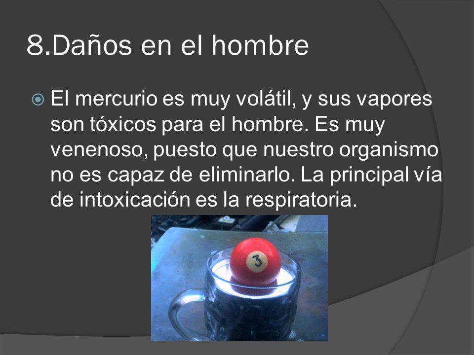 8.Daños en el hombre El mercurio es muy volátil, y sus vapores son tóxicos para el hombre. Es muy venenoso, puesto que nuestro organismo no es capaz d