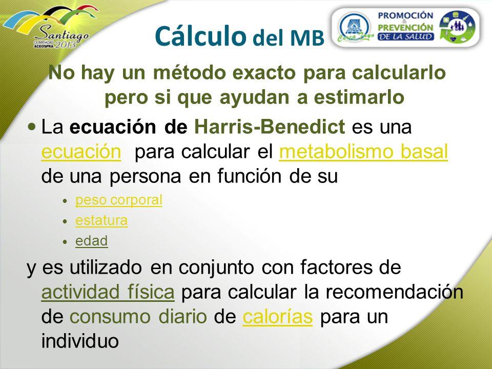 Cálculo del MB No hay un método exacto para calcularlo pero si que ayudan a estimarlo La ecuación de Harris-Benedict es una ecuación para calcular el