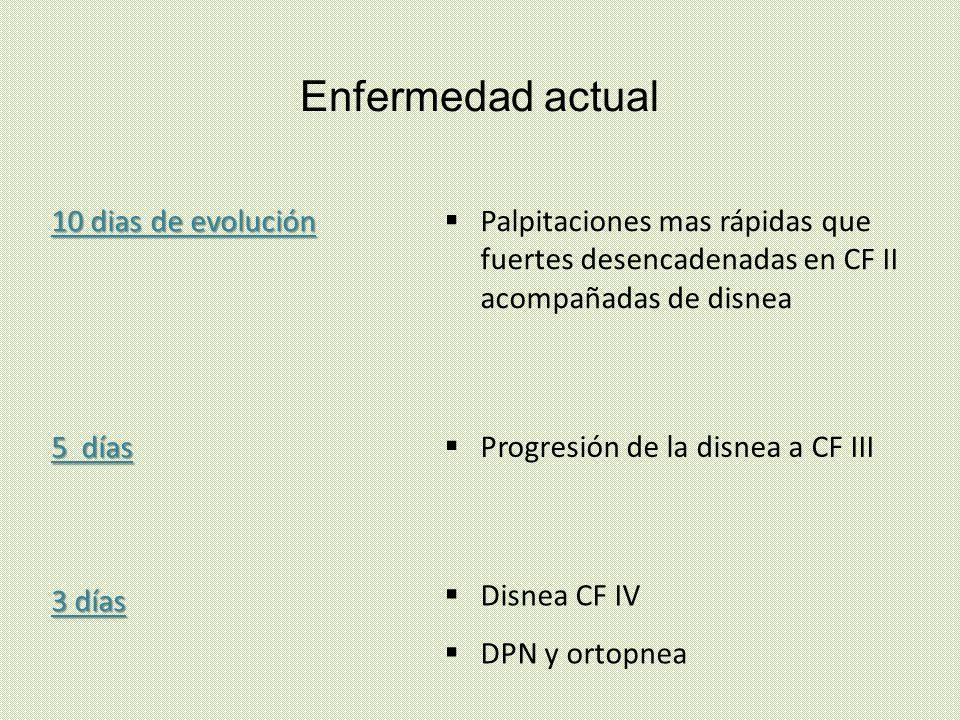 Ecocardiograma TT Estudios previos Resto de las estructuras valvulares sin alteraciones.