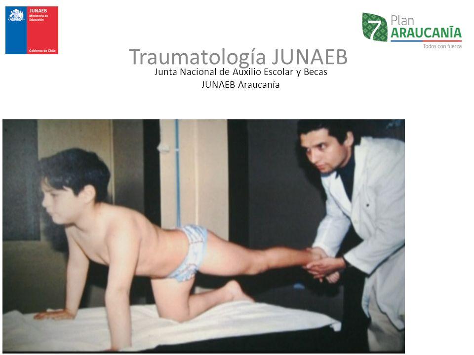 Junta Nacional de Auxilio Escolar y Becas JUNAEB Araucanía Traumatología JUNAEB