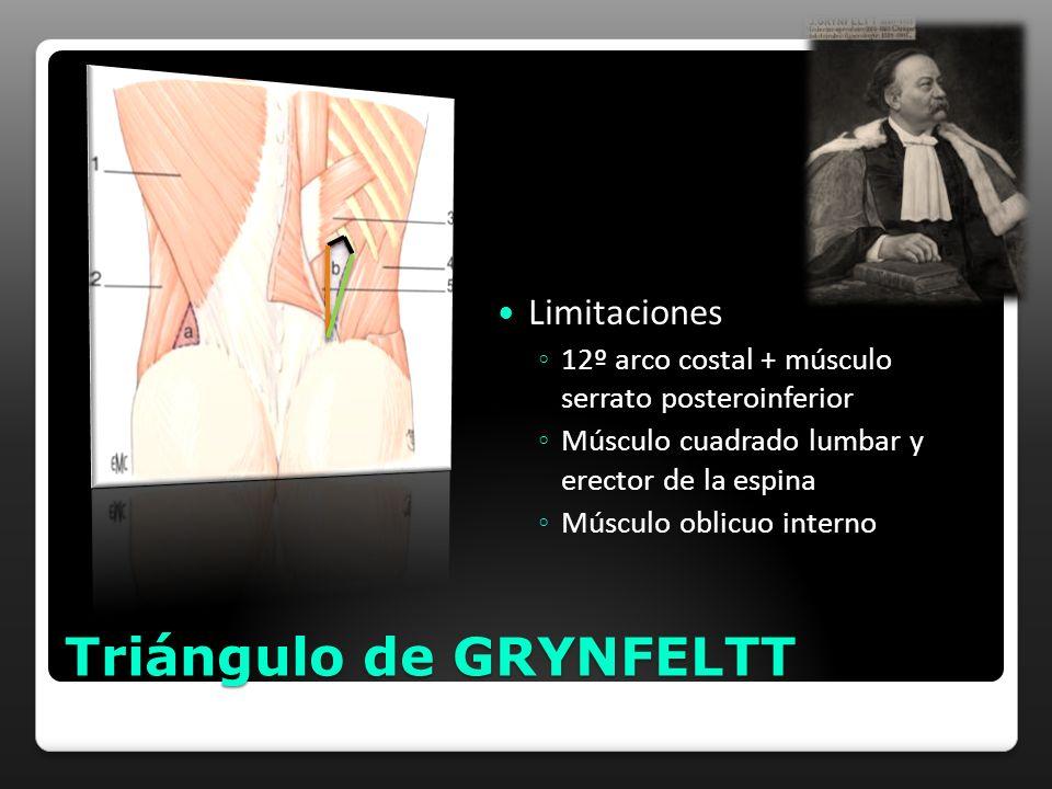 Triángulo de GRYNFELTT Limitaciones 12º arco costal + músculo serrato posteroinferior Músculo cuadrado lumbar y erector de la espina Músculo oblicuo i