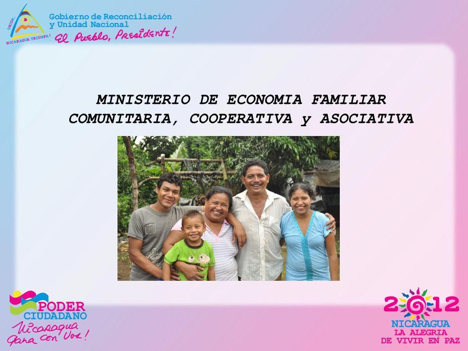 MINISTERIO DE ECONOMIA FAMILIAR COMUNITARIA, COOPERATIVA y ASOCIATIVA 1