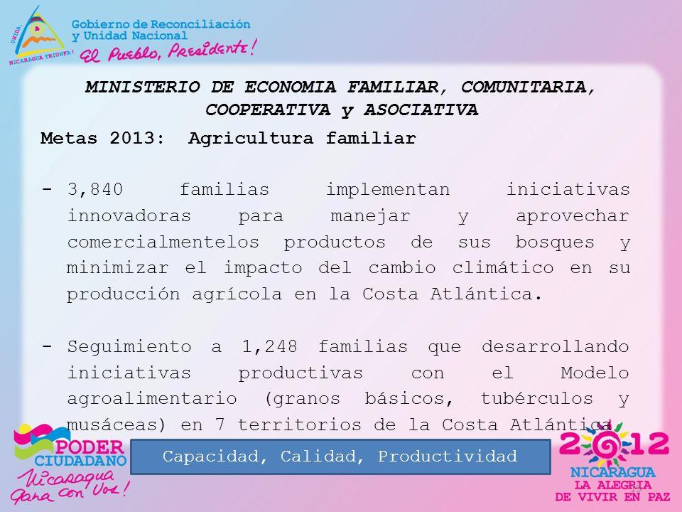 MINISTERIO DE ECONOMIA FAMILIAR, COMUNITARIA, COOPERATIVA y ASOCIATIVA Metas 2013: Agricultura familiar -3,840 familias implementan iniciativas innova
