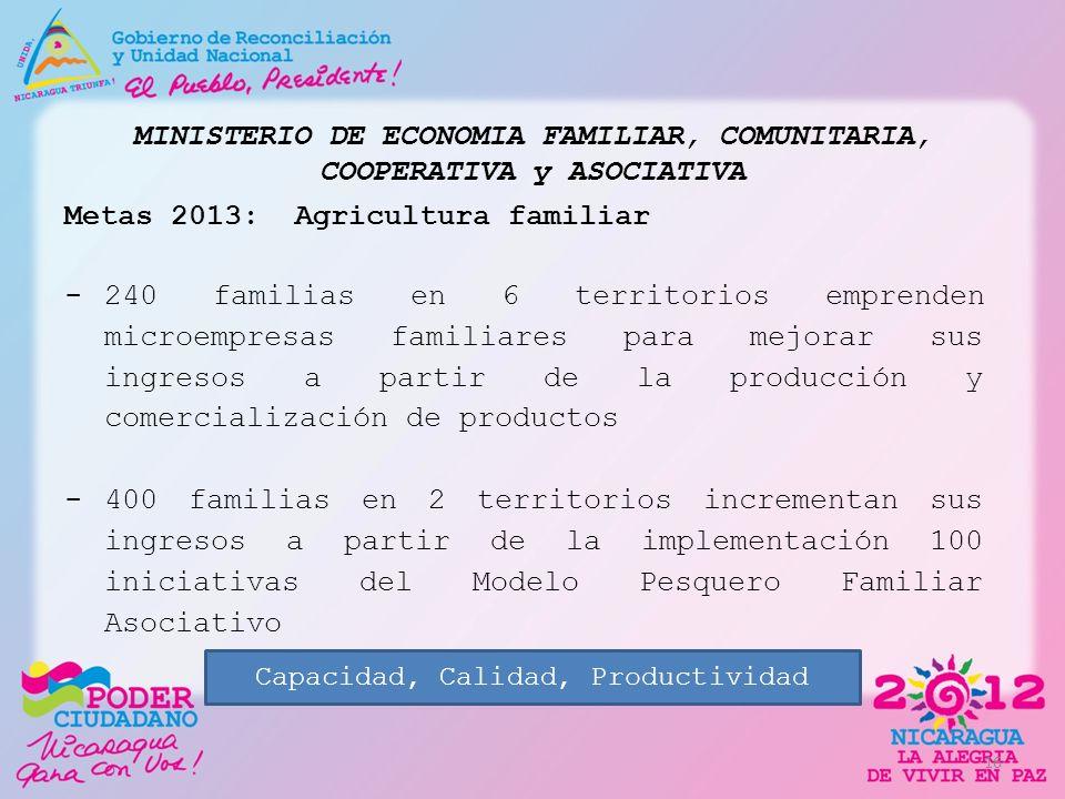 MINISTERIO DE ECONOMIA FAMILIAR, COMUNITARIA, COOPERATIVA y ASOCIATIVA Metas 2013: Agricultura familiar -240 familias en 6 territorios emprenden micro
