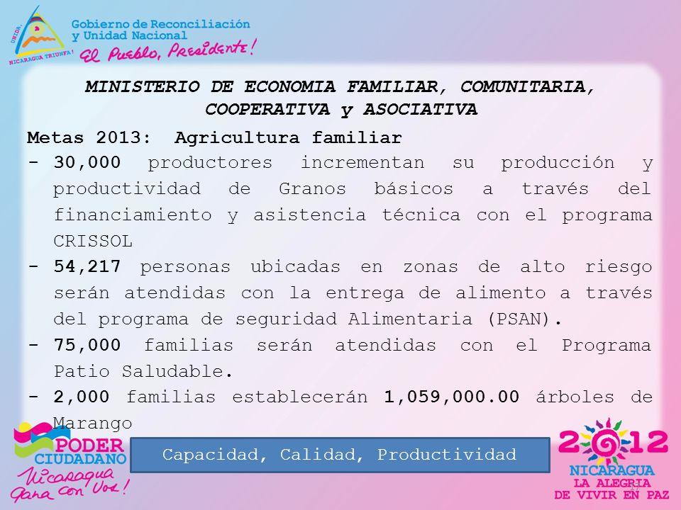MINISTERIO DE ECONOMIA FAMILIAR, COMUNITARIA, COOPERATIVA y ASOCIATIVA Metas 2013: Agricultura familiar -30,000 productores incrementan su producción