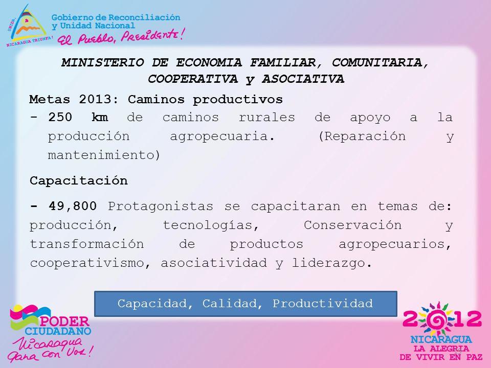 MINISTERIO DE ECONOMIA FAMILIAR, COMUNITARIA, COOPERATIVA y ASOCIATIVA Metas 2013: Caminos productivos -250 km de caminos rurales de apoyo a la produc