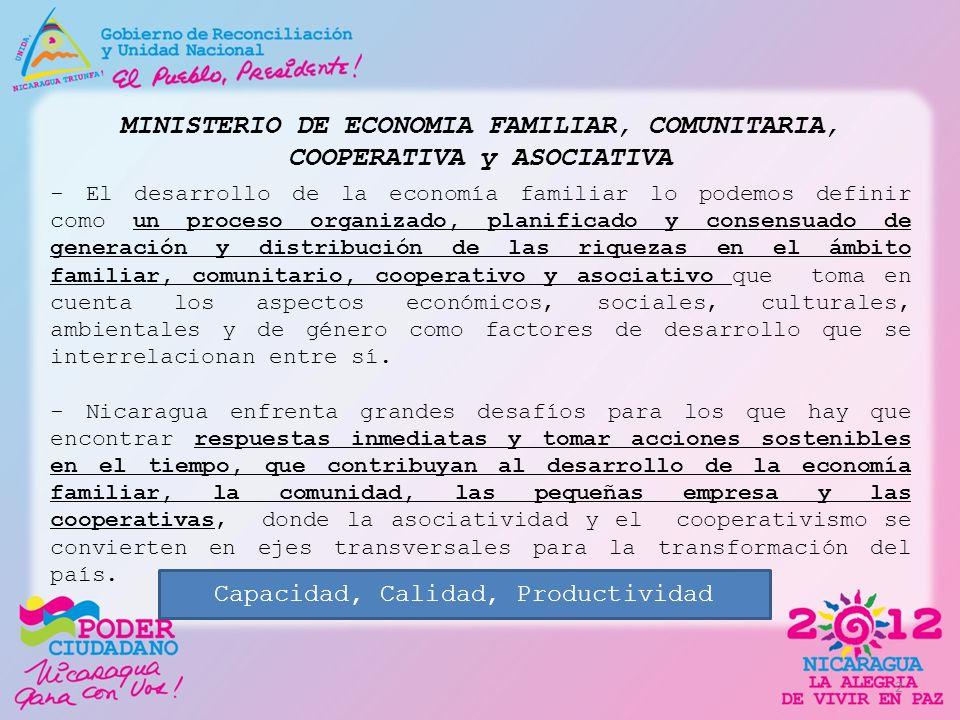 MINISTERIO DE ECONOMIA FAMILIAR, COMUNITARIA, COOPERATIVA y ASOCIATIVA - El desarrollo de la economía familiar lo podemos definir como un proceso orga