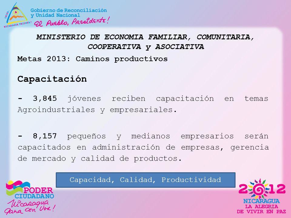 MINISTERIO DE ECONOMIA FAMILIAR, COMUNITARIA, COOPERATIVA y ASOCIATIVA Metas 2013: Caminos productivos Capacitación - 3,845 jóvenes reciben capacitaci