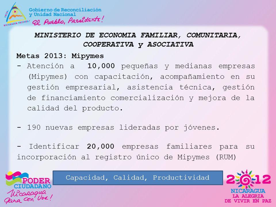 MINISTERIO DE ECONOMIA FAMILIAR, COMUNITARIA, COOPERATIVA y ASOCIATIVA Metas 2013: Mipymes -Atención a 10,000 pequeñas y medianas empresas (Mipymes) c