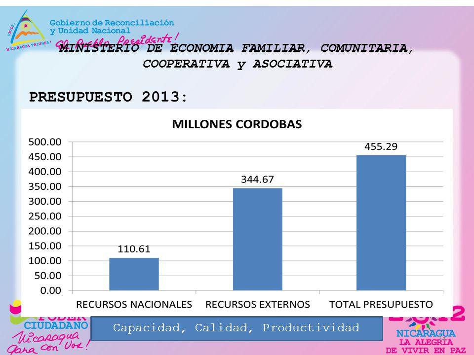 MINISTERIO DE ECONOMIA FAMILIAR, COMUNITARIA, COOPERATIVA y ASOCIATIVA PRESUPUESTO 2013: 24 Capacidad, Calidad, Productividad