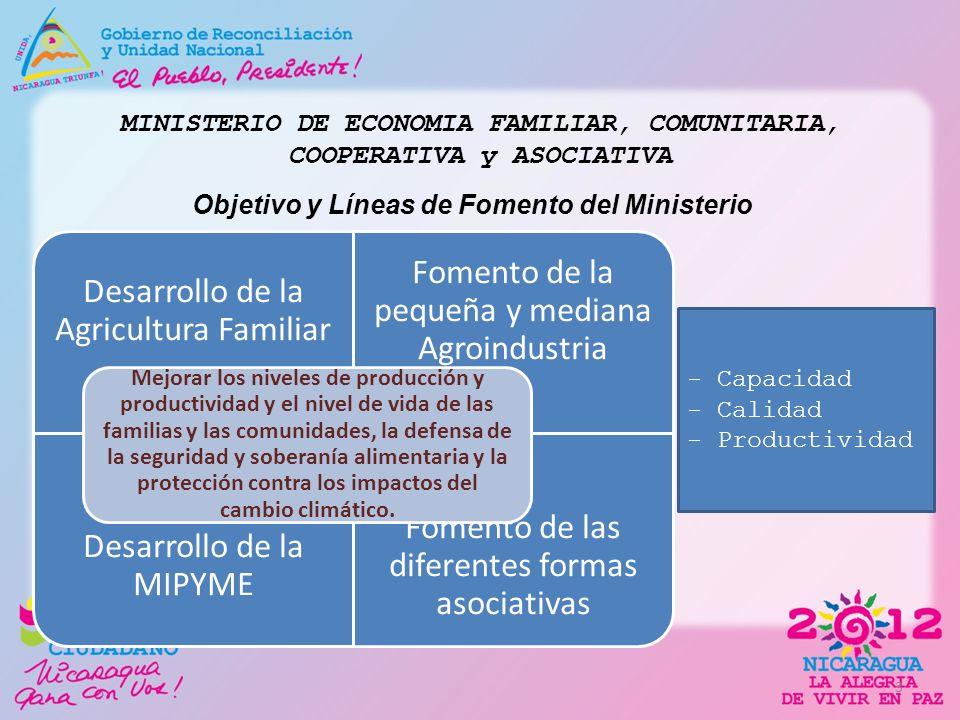MINISTERIO DE ECONOMIA FAMILIAR, COMUNITARIA, COOPERATIVA y ASOCIATIVA Objetivo y Líneas de Fomento del Ministerio 3 Desarrollo de la Agricultura Fami