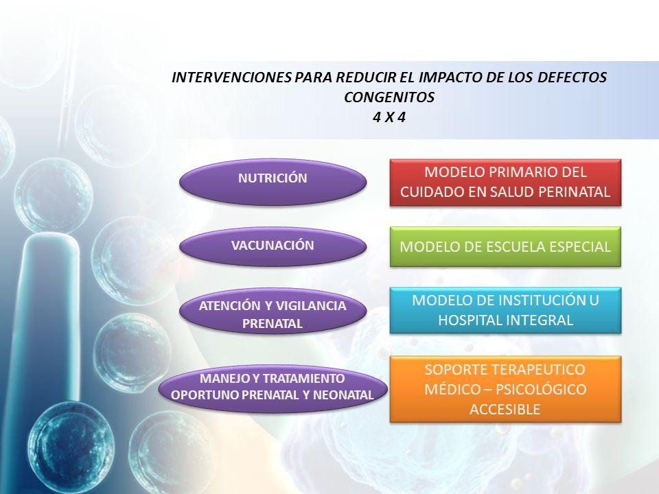 INTERVENCIONES PARA REDUCIR EL IMPACTO DE LOS DEFECTOS CONGENITOS 4 X 4 NUTRICIÓN MANEJO Y TRATAMIENTO OPORTUNO PRENATAL Y NEONATAL ATENCIÓN Y VIGILANCIA PRENATAL VACUNACIÓN MODELO PRIMARIO DEL CUIDADO EN SALUD PERINATAL MODELO DE ESCUELA ESPECIAL MODELO DE INSTITUCIÓN U HOSPITAL INTEGRAL SOPORTE TERAPEUTICO MÉDICO – PSICOLÓGICO ACCESIBLE