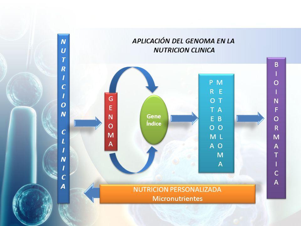 NUTRICIONCLINICA NUTRICIONCLINICA NUTRICIONCLINICA NUTRICIONCLINICA GENOMAGENOMA GENOMAGENOMA Gene Índice P M R E O T T A E B O M L A O M A P M R E O T T A E B O M L A O M A BIOINFORMATICABIOINFORMATICA BIOINFORMATICABIOINFORMATICA NUTRICION PERSONALIZADA Micronutrientes NUTRICION PERSONALIZADA Micronutrientes APLICACIÓN DEL GENOMA EN LA NUTRICION CLINICA