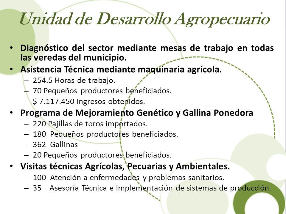 Unidad de Desarrollo Agropecuario Diagnóstico del sector mediante mesas de trabajo en todas las veredas del municipio. Asistencia Técnica mediante maq