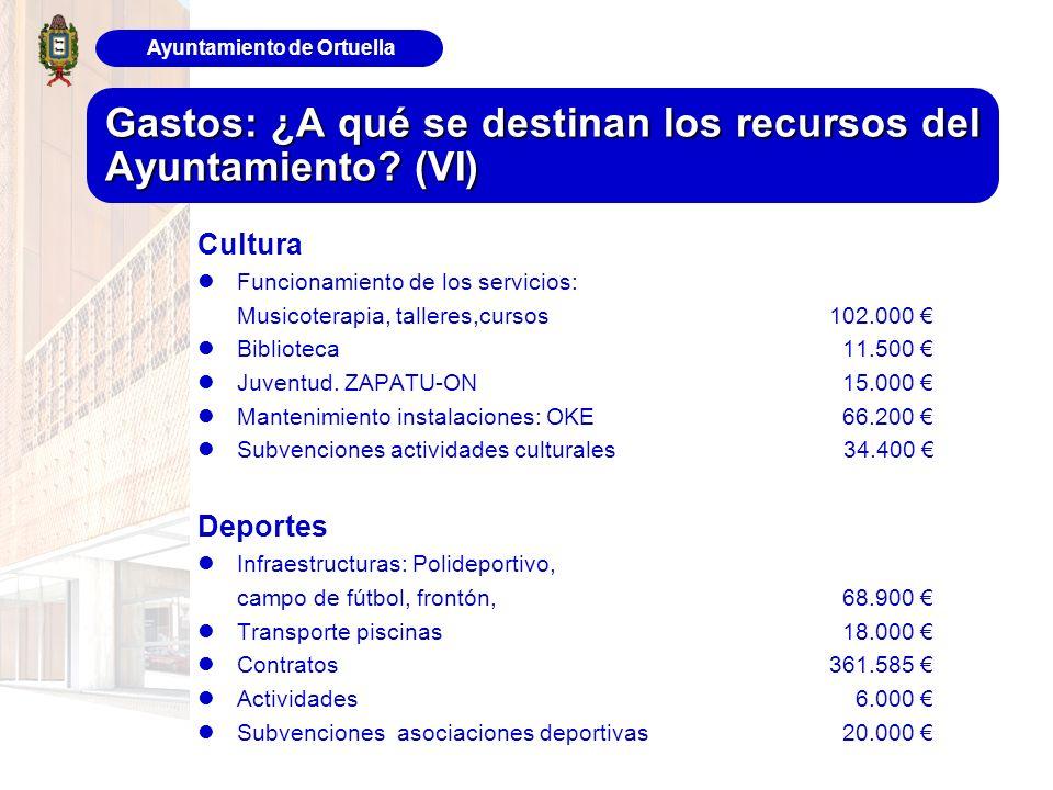 Ayuntamiento de Ortuella Gastos: ¿A qué se destinan los recursos del Ayuntamiento? (VI) Cultura Funcionamiento de los servicios: Musicoterapia, taller