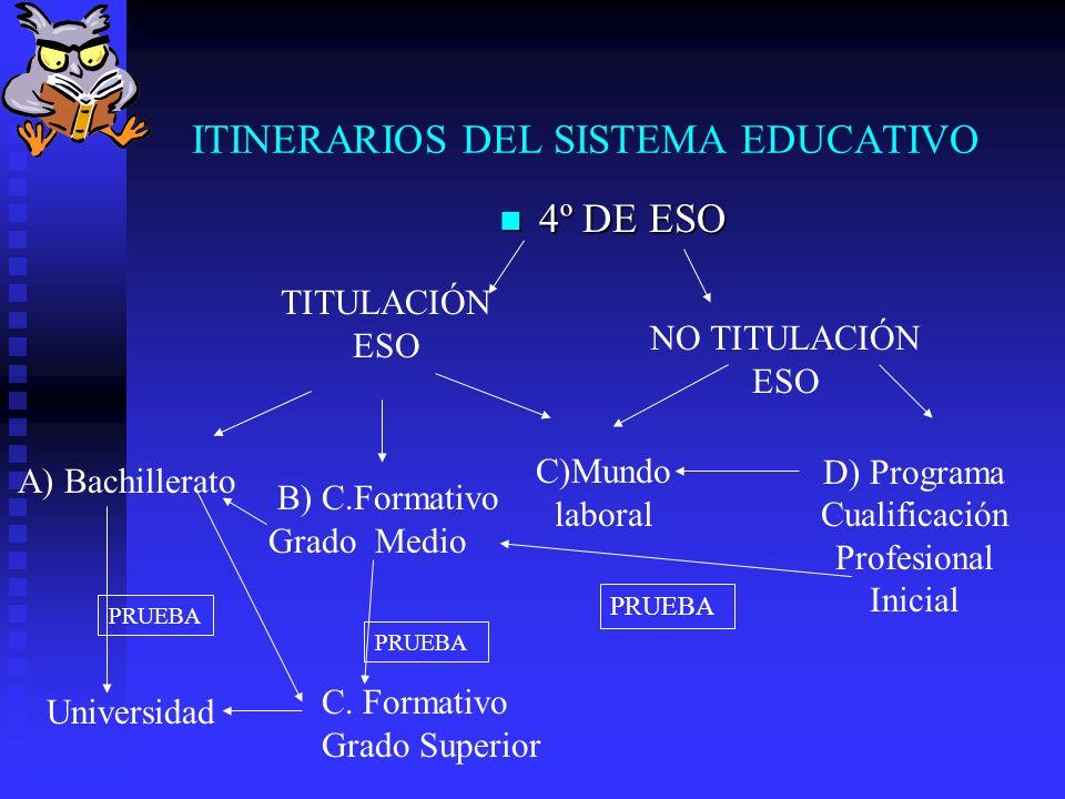 MATERIAS OPTATIVAS 4º ESO - Se eligen 3 de las siguientes asignaturas: Biología y Geología.