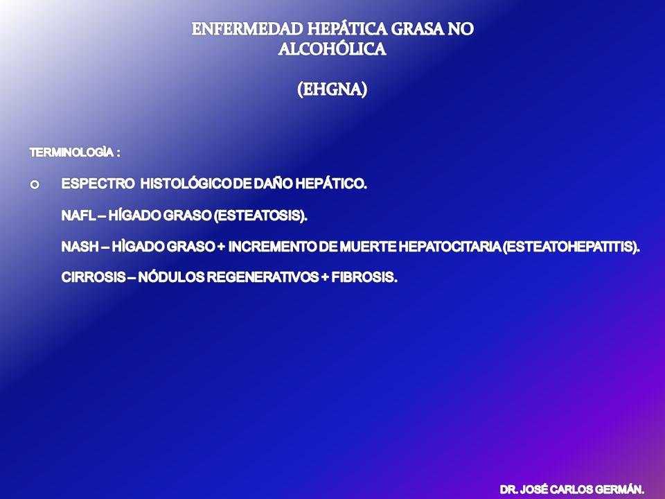 EHGNA. FISIOPATOLOGIA. GASTROENTEROLOGY 2006;131:934–945
