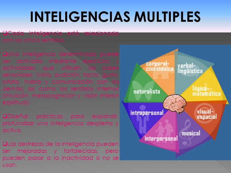 INTELIGENCIAS MULTIPLES Cada inteligencia está relacionada con los cinco sentidos. Una inteligencia determinada puede ser activada mediante ejercicios