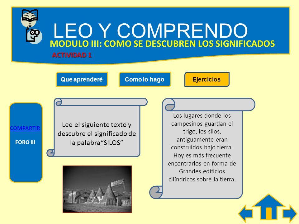LEO Y COMPRENDO Que aprenderéComo lo hagoEjercicios MODULO III: COMO SE DESCUBREN SIGNIFICADOS Es posible que al leer un texto, te encuentres con pala