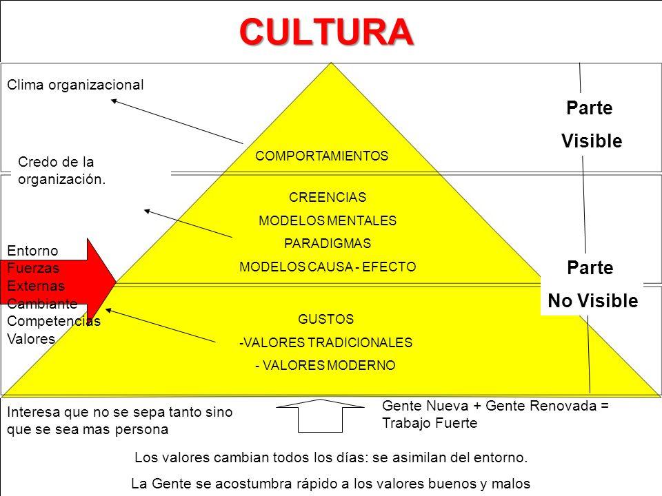 CULTURA COMPORTAMIENTOS CREENCIAS MODELOS MENTALES PARADIGMAS MODELOS CAUSA - EFECTO GUSTOS -VALORES TRADICIONALES - VALORES MODERNO Clima organizacio