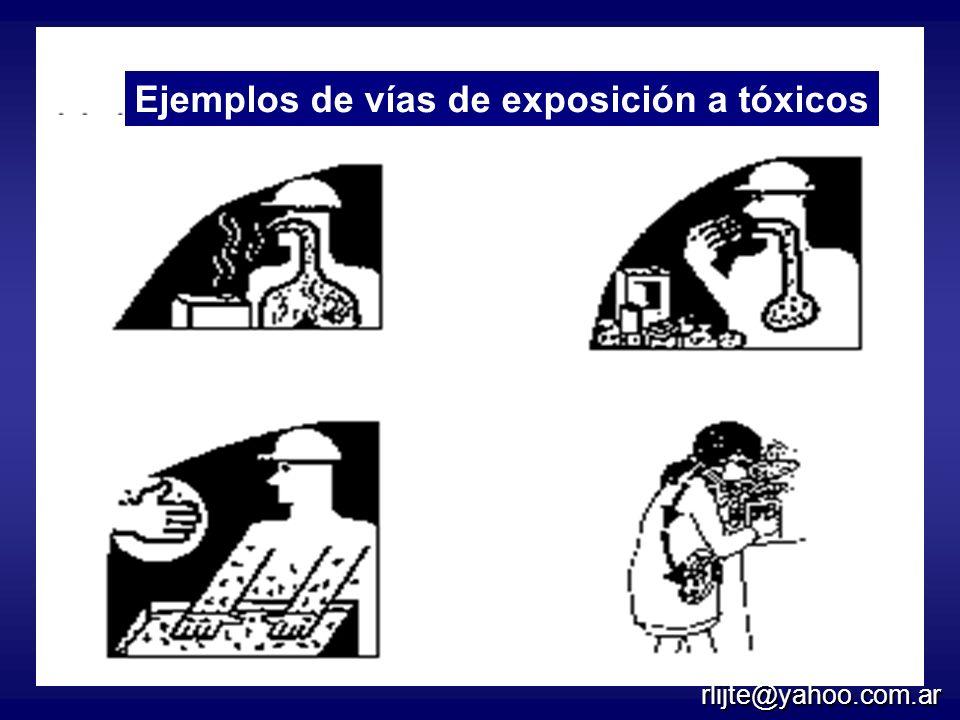 Cuatro rutas de exposición Inhalación Ingestión CutáneaTransplacentaria Ejemplos de vías de exposición a tóxicos rlijte@yahoo.com.ar