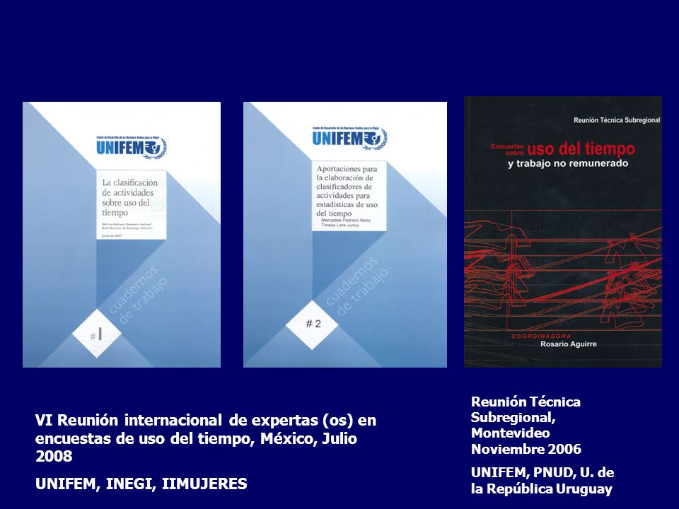 Reunión Técnica Subregional, Montevideo Noviembre 2006 UNIFEM, PNUD, U. de la República Uruguay VI Reunión internacional de expertas (os) en encuestas