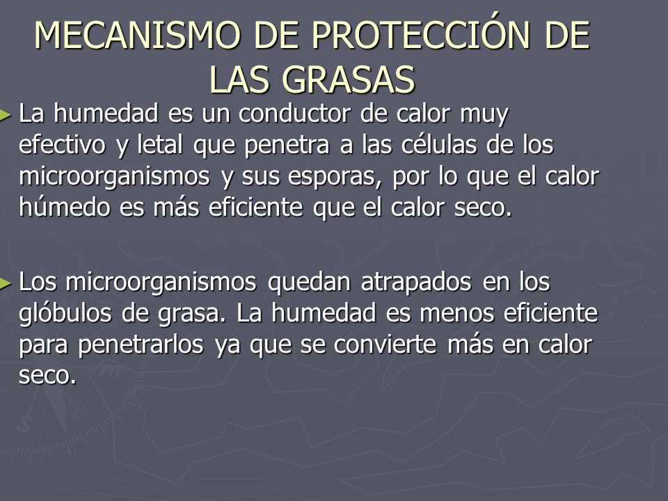 MECANISMO DE PROTECCIÓN DE LAS GRASAS La humedad es un conductor de calor muy efectivo y letal que penetra a las células de los microorganismos y sus