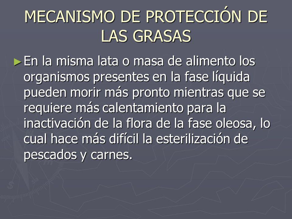 MECANISMO DE PROTECCIÓN DE LAS GRASAS En la misma lata o masa de alimento los organismos presentes en la fase líquida pueden morir más pronto mientras
