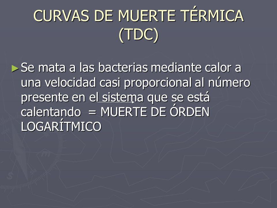 CURVAS DE MUERTE TÉRMICA (TDC) Se mata a las bacterias mediante calor a una velocidad casi proporcional al número presente en el sistema que se está c