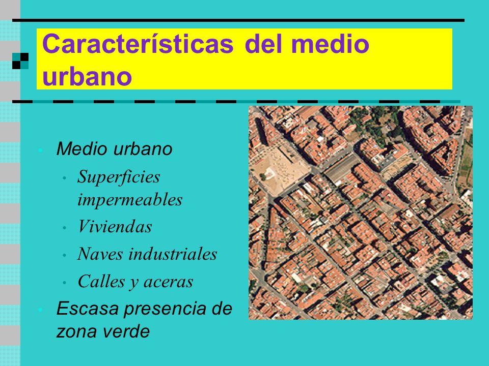 Características del medio urbano Medio urbano Superficies impermeables Viviendas Naves industriales Calles y aceras Escasa presencia de zona verde