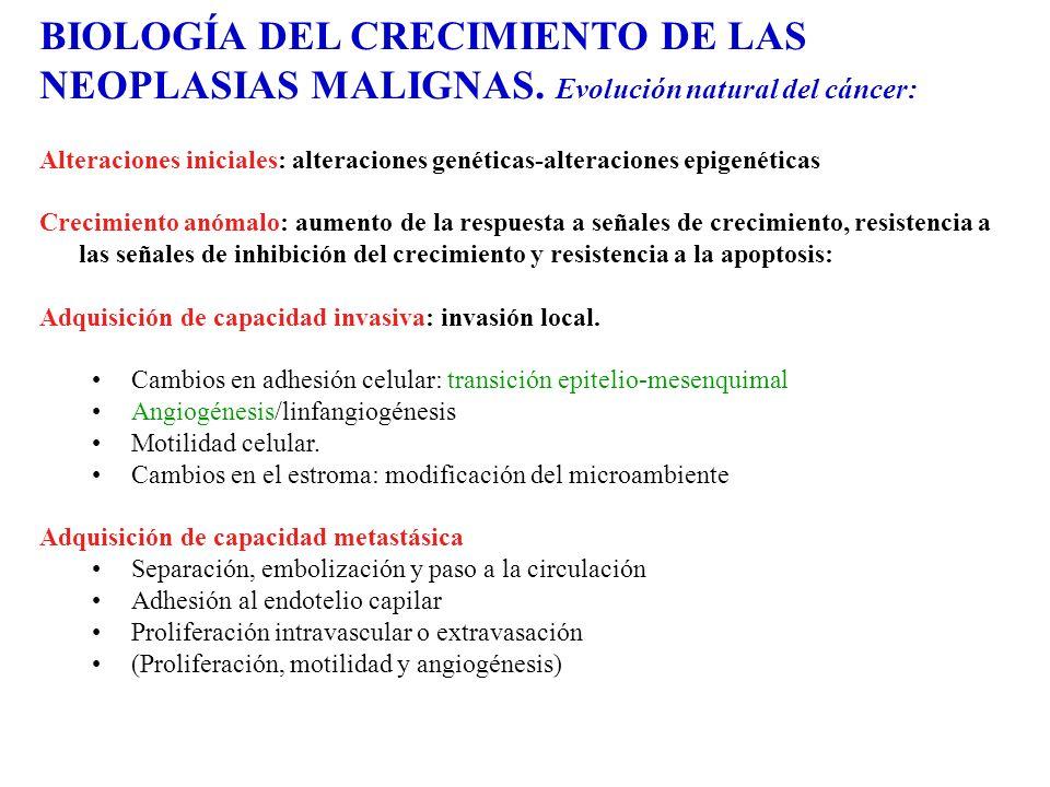 BIOLOGÍA DEL CRECIMIENTO DE LAS NEOPLASIAS MALIGNAS. Evolución natural del cáncer: Alteraciones iniciales: alteraciones genéticas-alteraciones epigené