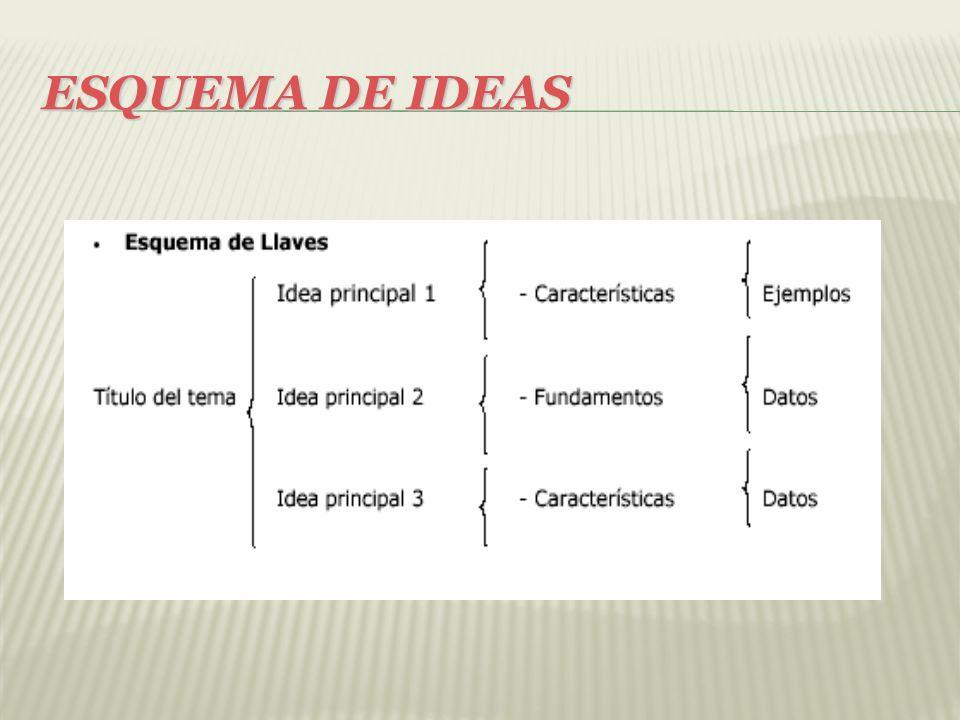 ESQUEMA DE IDEAS