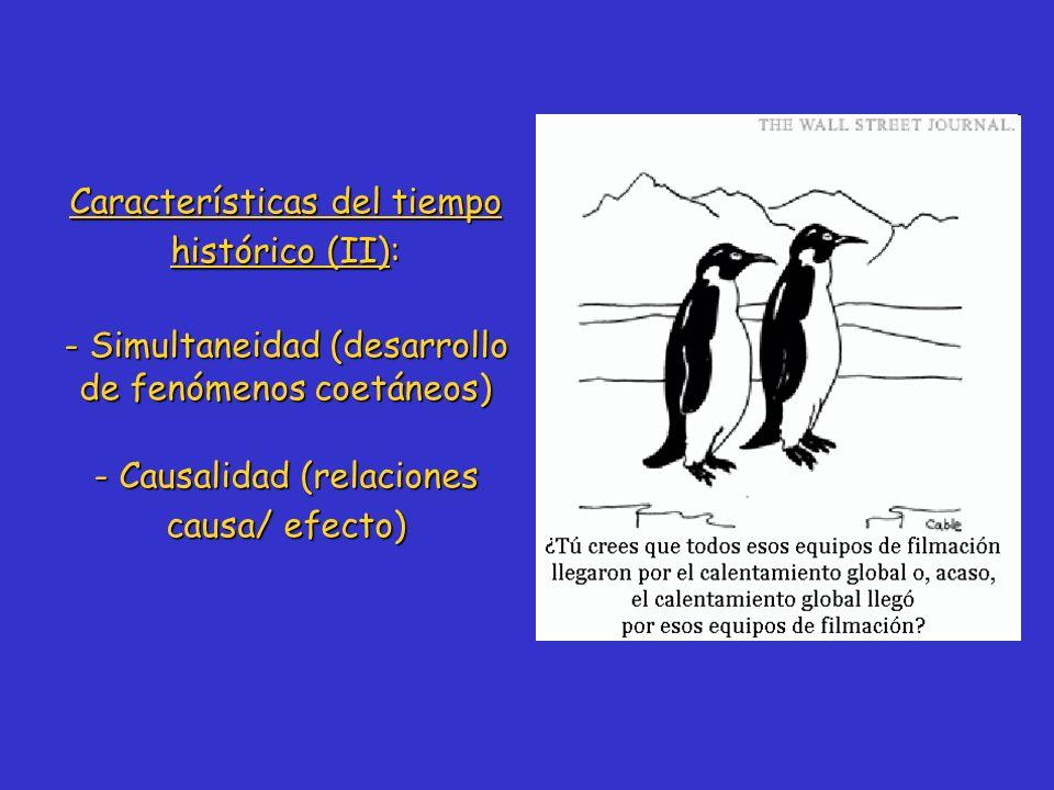 Características del tiempo histórico (II): - Simultaneidad (desarrollo de fenómenos coetáneos) - Causalidad (relaciones causa/ efecto)
