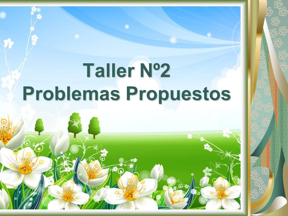 Taller Nº2 Problemas Propuestos