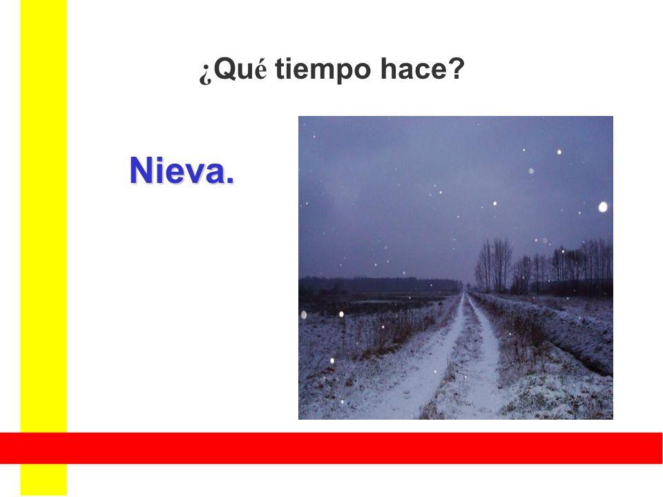 ¿ Qu é tiempo hace? Nieva.