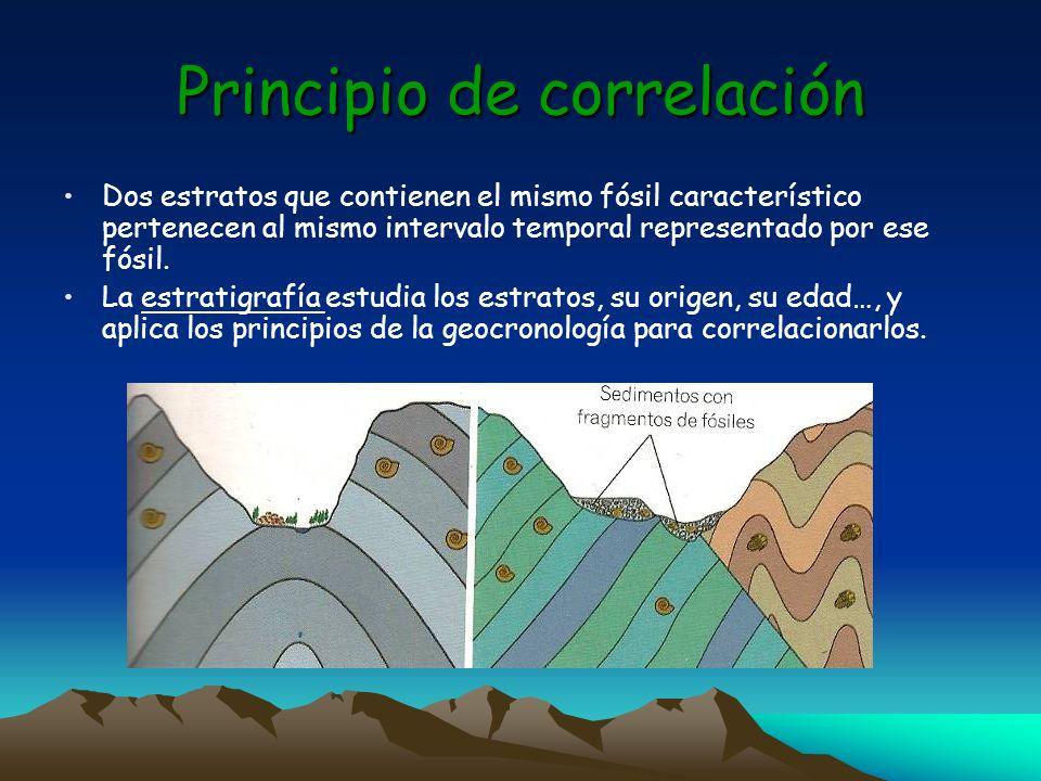Principio de correlación Dos estratos que contienen el mismo fósil característico pertenecen al mismo intervalo temporal representado por ese fósil. L