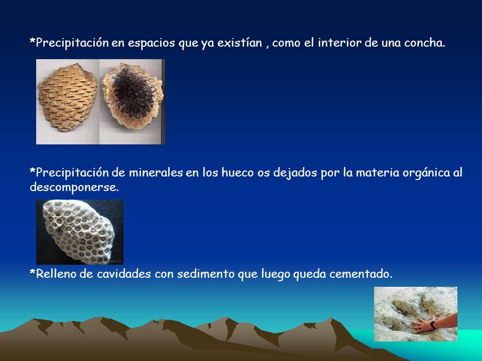 *Precipitación en espacios que ya existían, como el interior de una concha. *Precipitación de minerales en los hueco os dejados por la materia orgánic