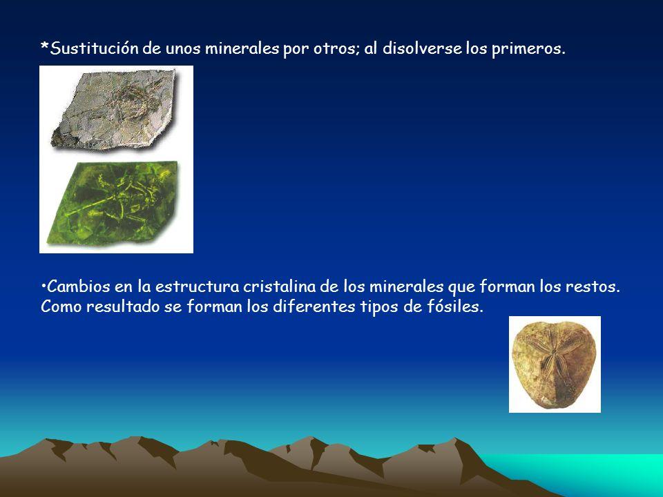 *Sustitución de unos minerales por otros; al disolverse los primeros. Cambios en la estructura cristalina de los minerales que forman los restos. Como