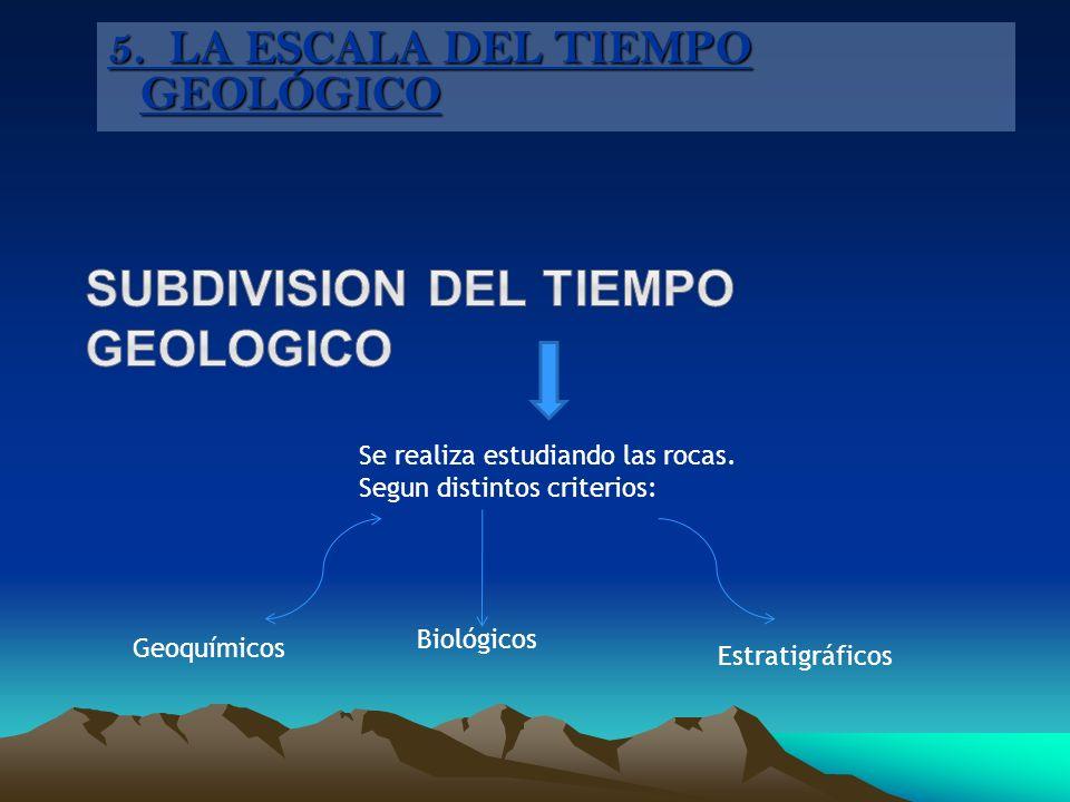 Se realiza estudiando las rocas. Segun distintos criterios: Geoquímicos Biológicos Estratigráficos 5. LA ESCALA DEL TIEMPO GEOLÓGICO