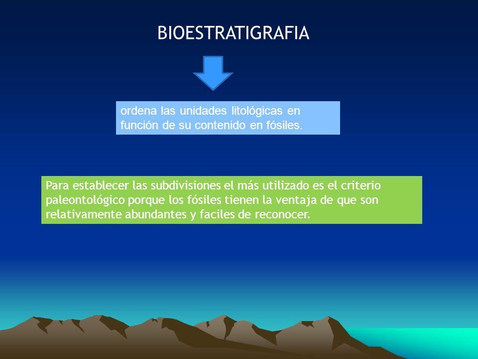BIOESTRATIGRAFIA ordena las unidades litológicas en función de su contenido en fósiles. Para establecer las subdivisiones el más utilizado es el crite