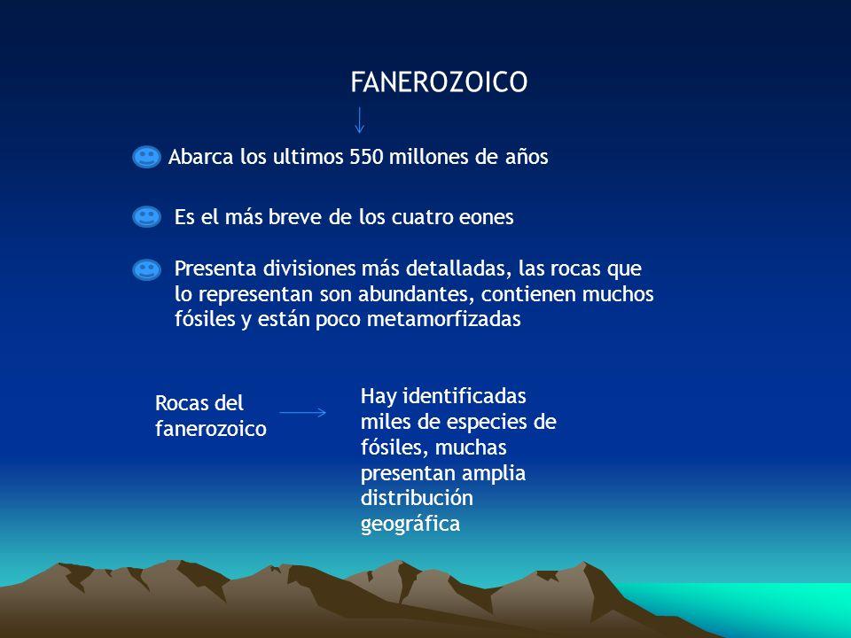 FANEROZOICO Abarca los ultimos 550 millones de años Es el más breve de los cuatro eones Presenta divisiones más detalladas, las rocas que lo represent