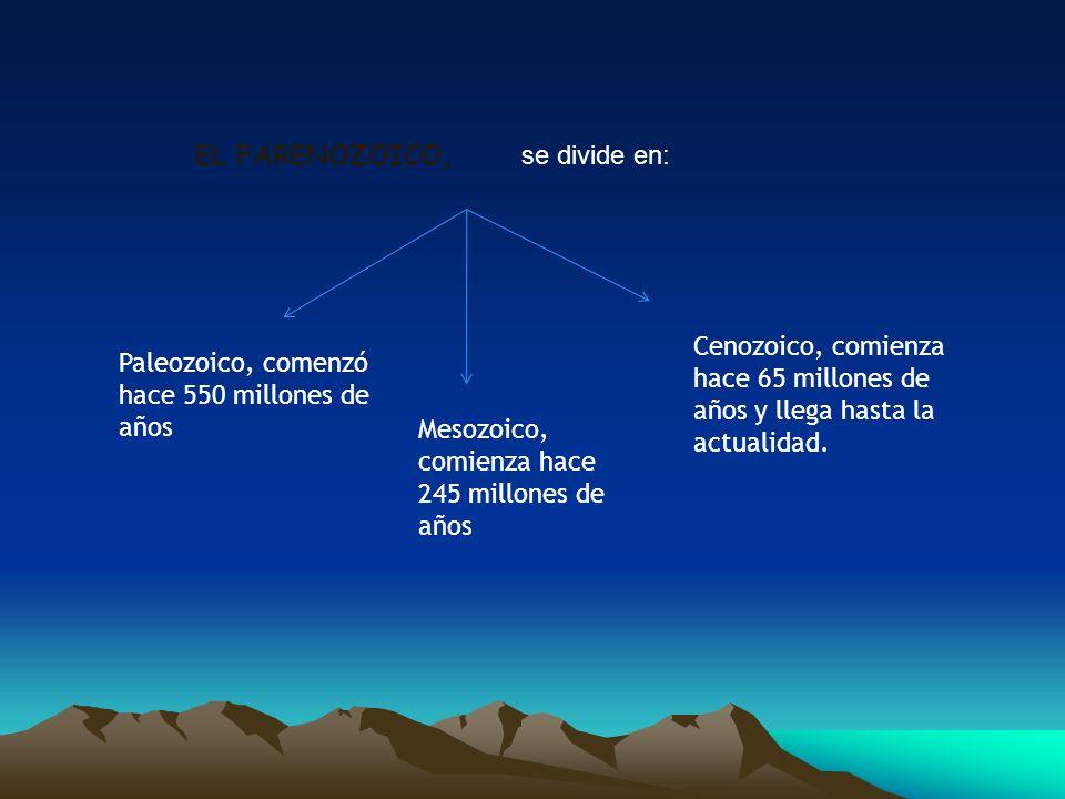 EL FARENOZOICO, se divide en: Paleozoico, comenzó hace 550 millones de años Mesozoico, comienza hace 245 millones de años Cenozoico, comienza hace 65