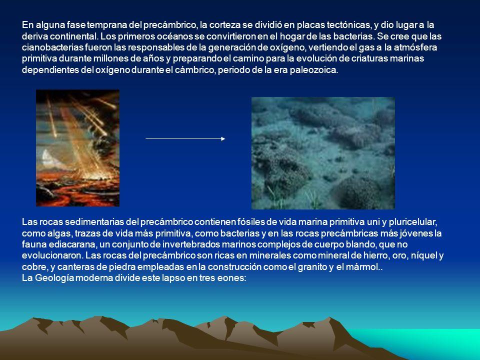 En alguna fase temprana del precámbrico, la corteza se dividió en placas tectónicas, y dio lugar a la deriva continental. Los primeros océanos se conv