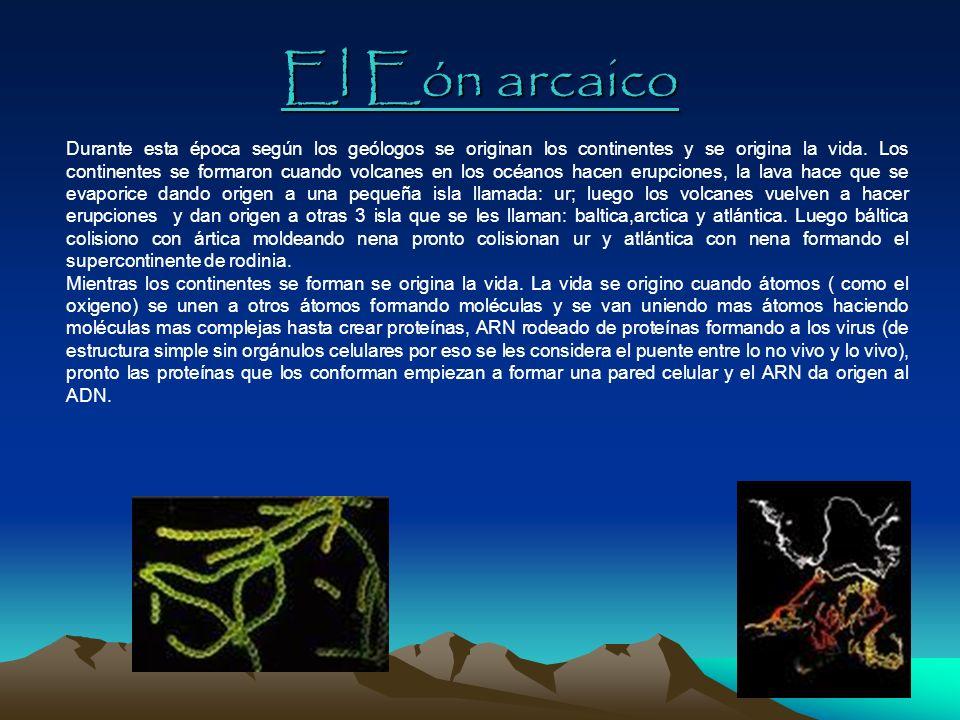 El Eón arcaico Durante esta época según los geólogos se originan los continentes y se origina la vida. Los continentes se formaron cuando volcanes en